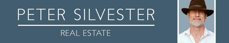 Peter Silvester Real Estate Retina Logo